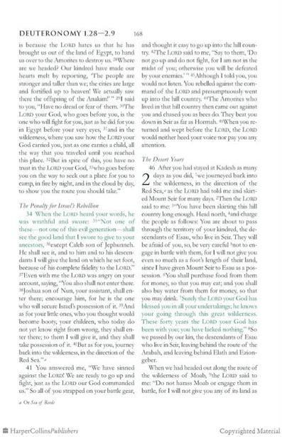 Grafous :: Diseño Gráfico Social, Sostenible y Activista :: La Biblia Verde